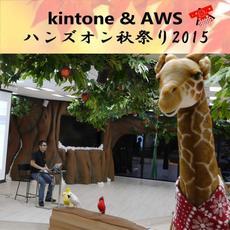 11月14日(土)kintone & AWS ハンズオン秋祭り2015を開催します!