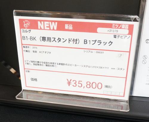 DSC00251 copy.jpg