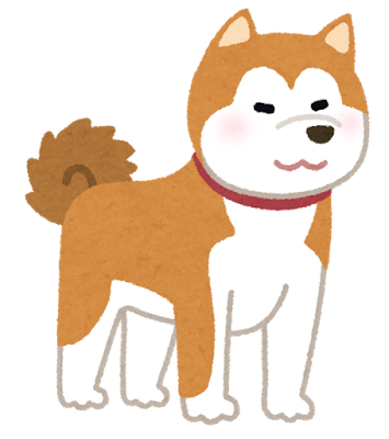 dog_akitainu.png