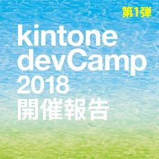 kintone devCamp 2018 開催報告が来たぁぁぁあー♪ ~第1弾~